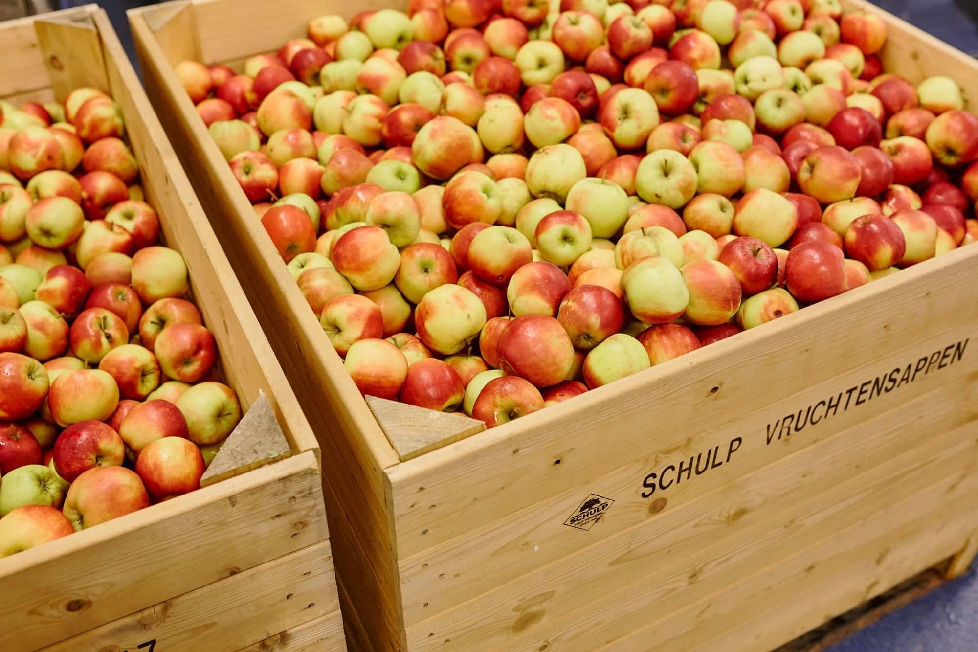Schulp - Appels